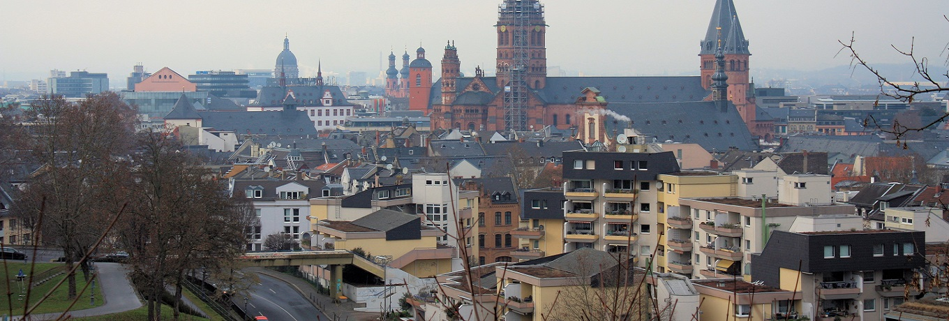 mainz-from-the-citadel